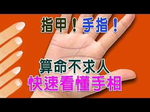 【算命不求人】快速看懂手相-(九)指甲、手指分析(精華版)