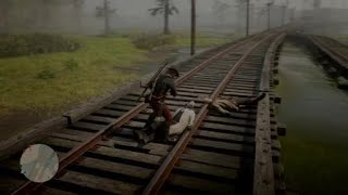 Red Dead Redemption 2_20190219185339