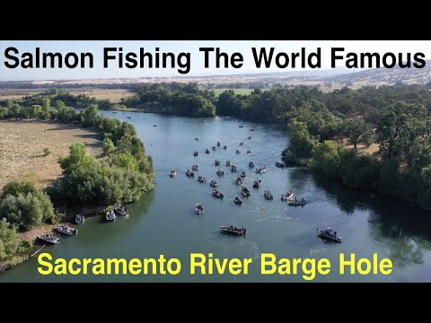 Salmon Fishing California's World Famous Barge Hole