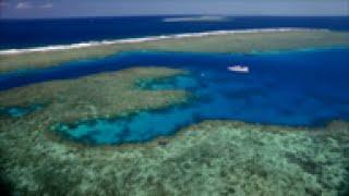 جزيرة في استراليا تبهر السواح بجمال الحياة المائية فيها