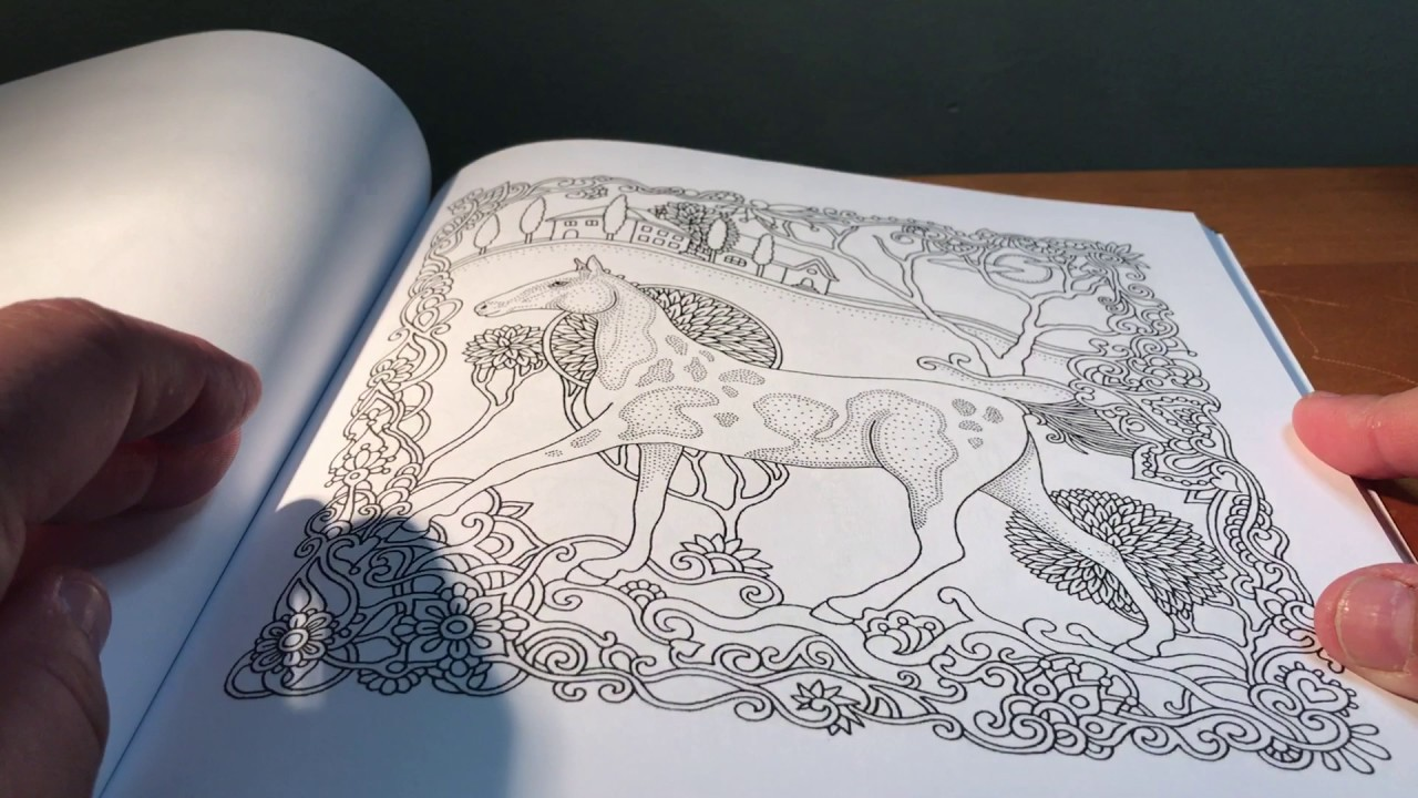 Coloring Book Review Enchanted Horses By Olga Goloveshkina
