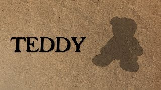 Teddy - A Picture Book Story