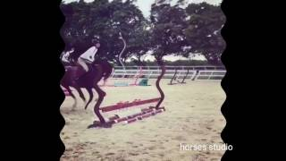 Риск конного спорта, падения с лошадей, horse fails