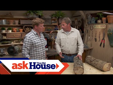 How to Cut Down a Dangerous Tree | Ask This Old House