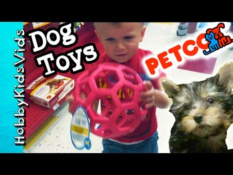 petco-dog-toy-haul!-hobbypuppy-goes-shopping-fun-pet-toys-hobbykidsvids