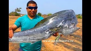 #YOU NEVER SEEN BEFORE THIS TYPE OF FISH | #Do You Know Name of the Fish? | #BBQ BIG HEADED FISH
