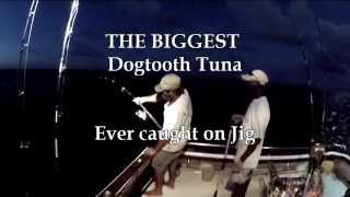 Dogtooth Tuna World Record - Biggest Dogtooth ever caught on jig - Jason and Mady