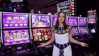 IGT Scarab NEW GAME @ Game World Bucuresti Mall