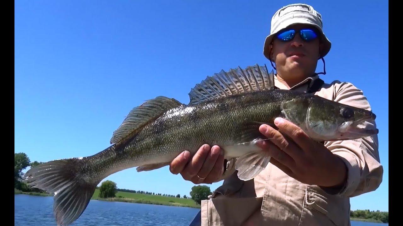 Рыбалка с михалычем видео