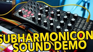 Moog Subharmonicon: What does it sound like?