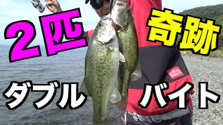 【バス釣り】1つのルアーで2匹バスが釣れた!【奥琵琶湖】