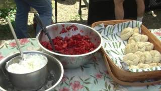 The Framingham Beat - Strawberry Festival 2016