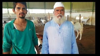 Interview of Sharif Patel Goat Farm Owner | Indore | MP
