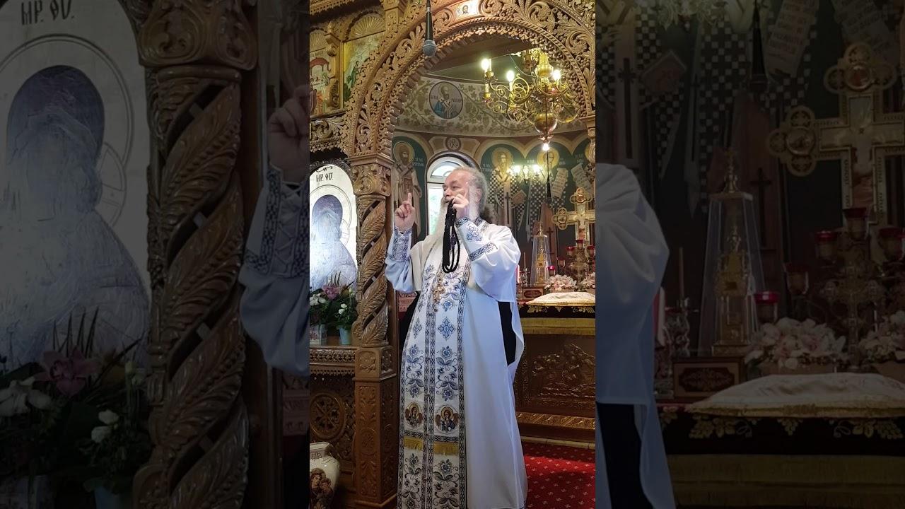 Mari Duhovnici Romani: Parintele Ghelasie de la frasinei ...   Parintele Ghelasie
