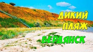 Бердянск 2019: дикий пляж на дачах
