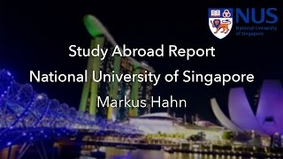 National University of Singapore - Study Abroad Report