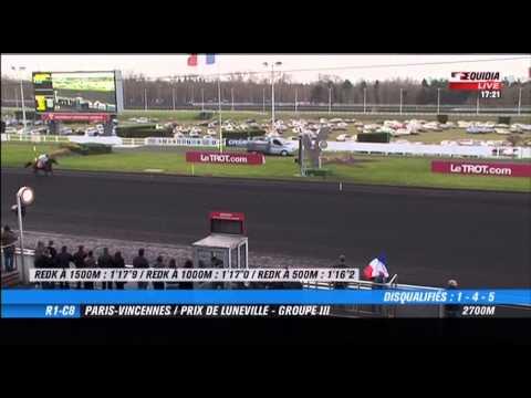 Vincennes  -  Prix de Luneville (GROUPE III)  -  08-02-2015  -  Biscuit Delavera