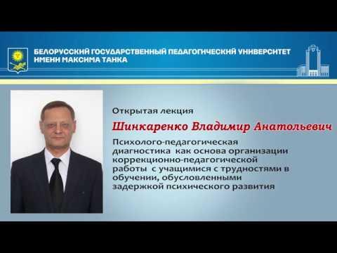 Золотая лекция Шинкаренко В.А.