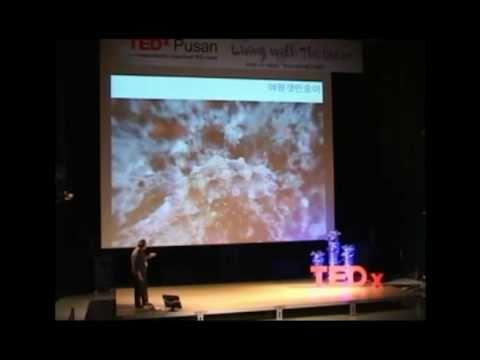 TEDxBusan - Park Jinho - Busan: under the sea through lenses