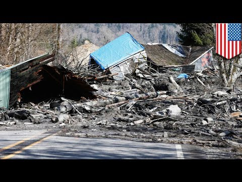 Washington mudslide: 14 confirmed dead, as many as 176 may be missing