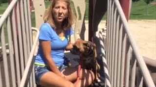Review!! Pet Owner Gets Help From  Dog Training Genesis When Other Trainers Fail.