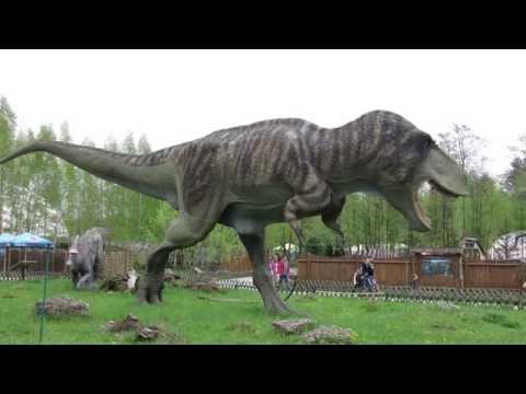 Researchers Uncover Super-Massive Dinosaur in Patagonia, Argentina.