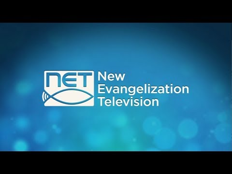 NET  TV  Promo Reel & Highlights (2018)