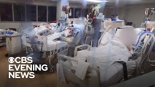 Hospitals overwhelmed as Florida reports record virus deaths