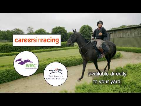 Welcome To Your New Career As A Racing Groom