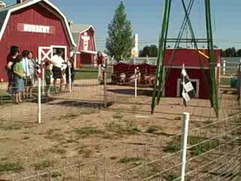 Pig Race At Old Macdonald S Farm In Rapid City Sd Youtube