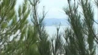 видео Объединение пансионатов Курорт Пицунда, Пицунда, Абхазия. Гагра-туроператор