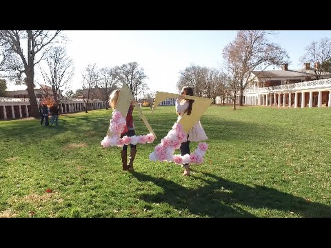 University of Virginia Delta Zeta - Recruitment Preview 2016