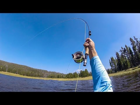 Grebe Lake: Fly Fishing Yellowstone National Park