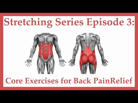 Stretches for Golf – Episode 3 Core Exercise for Lower Back Relief
