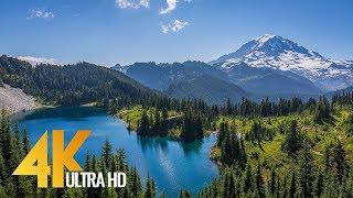Mount Rainier, Summer in 4K - National Park, Washington State - Short Preview