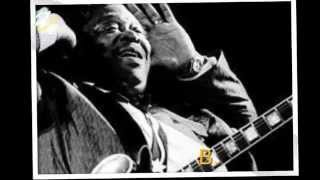 BBKing Shake it up and go