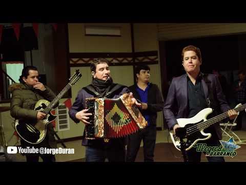 LOS ALEGRES DEL BARRANCO - EL CABALLERO EN VIVO