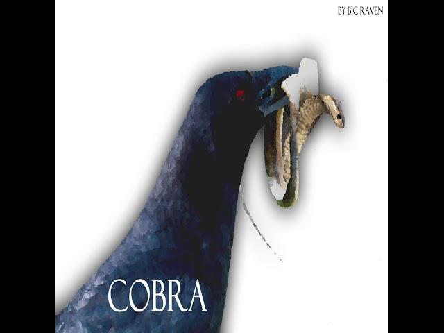 COBRA ALBUM - MI MORENA
