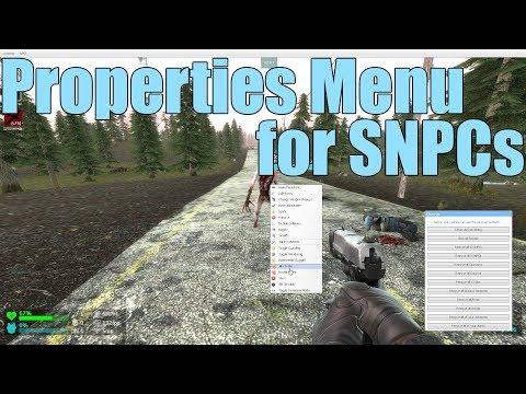 Properties Menu for SNPCs