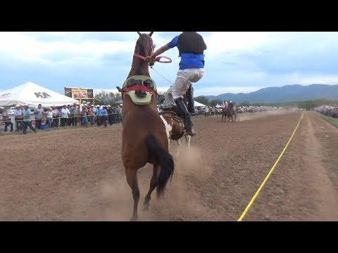 Carreras de Caballos en Huasabas 18 de Agosto 2018