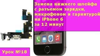 Замена нижнего шлейфа с разъемом зарядки, микрофоном, гарнитурой и антенной GSM на iPhone 6