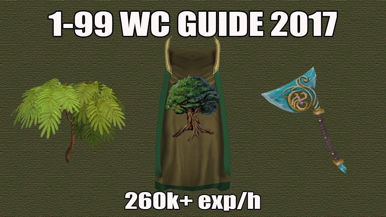 Runescape 3 1 99 Woodcutting Guide 2017