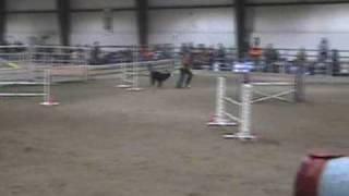 Kiva Osojnicki Jumpers Agility Run 3/14/09