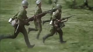 Воронежское сражение (июнь 1942 - февраль 1943 года) (Студия А.Никонова, 2017)