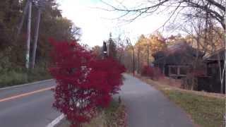 ハルニレテラス 日本ロマンチック街道 [撮影日時:2012/11/04 14:23] 軽...