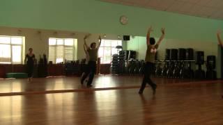Фрагмент урока испанского танца