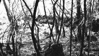 Sea of Trees - Aokigahara I (Black Metal)