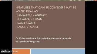 Semantic Features