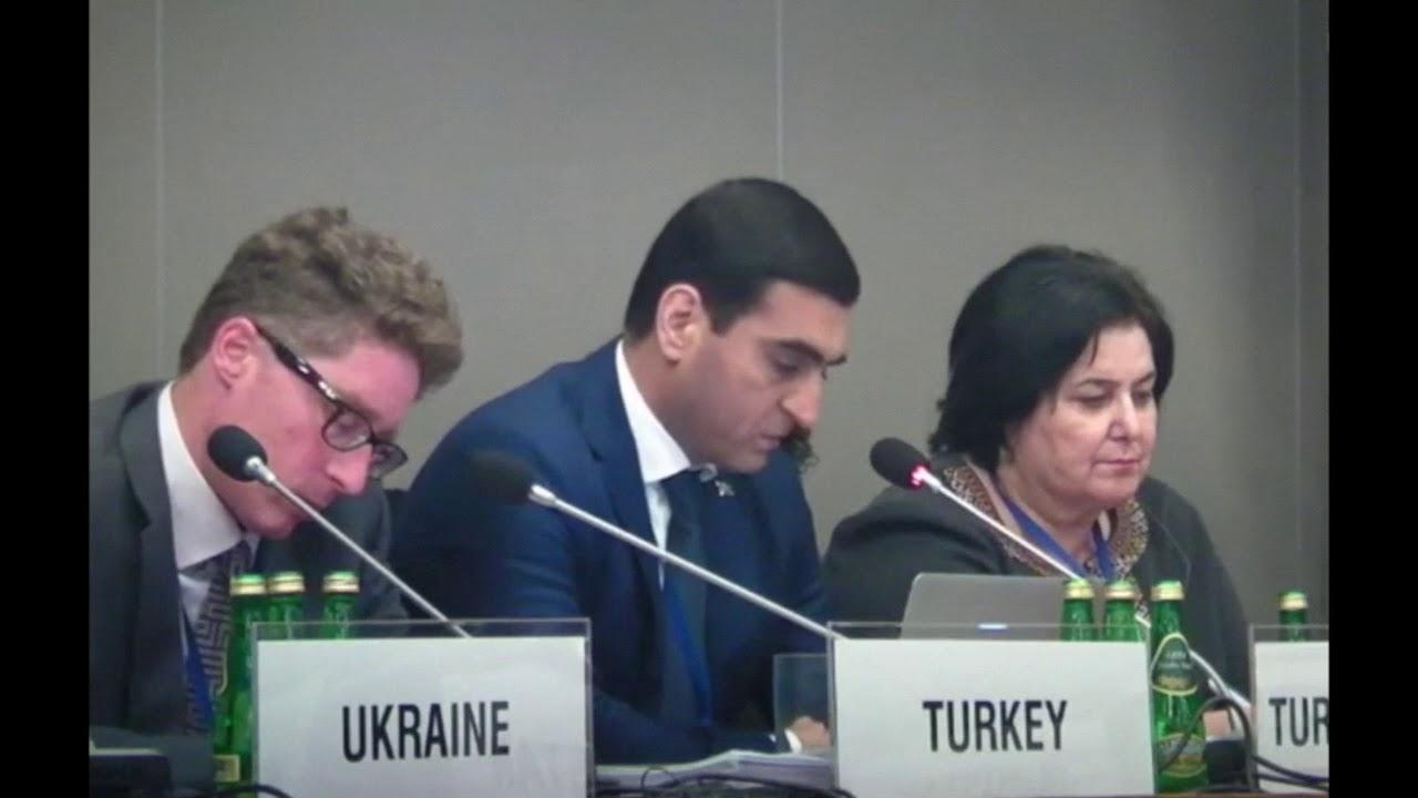 Download Заявление Туркменистана на рабочем заседании HDIM 2016/ Туркменистан об исчезнувших