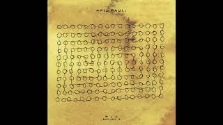 Acid Pauli - René (Roman Flügel Remix)